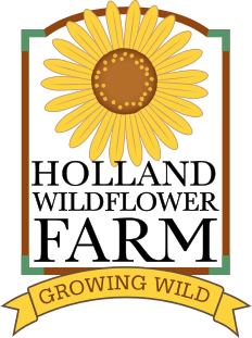 HollandWildFlowerFarm